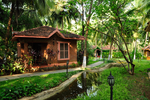 the luxurious gardens at ayurvedic healing village where you can receive ayurveda treatment